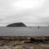 Ynys Seiriol / Puffin Island
