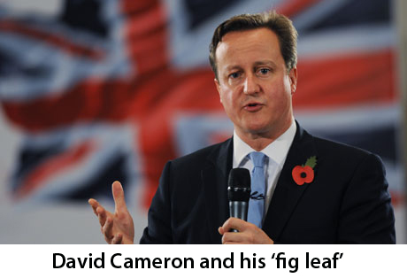 Cameron poppy
