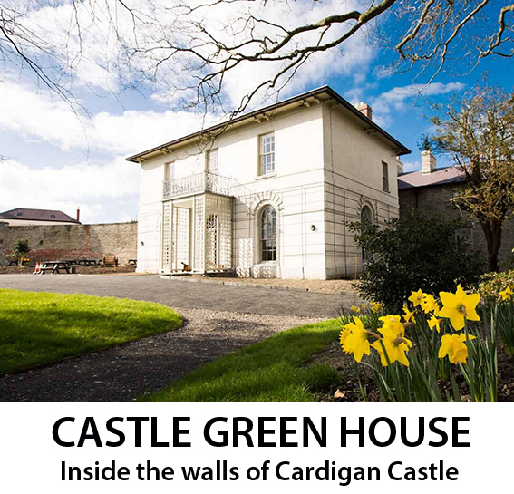 Castle Green House 1