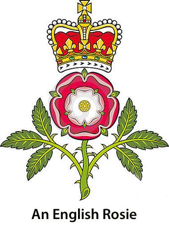 A Verr English Rose