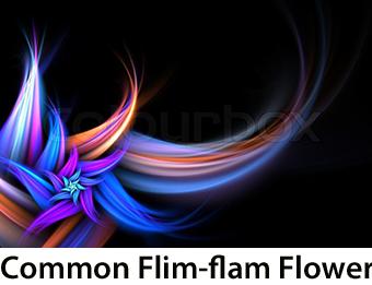 Common Flim-flam Flower