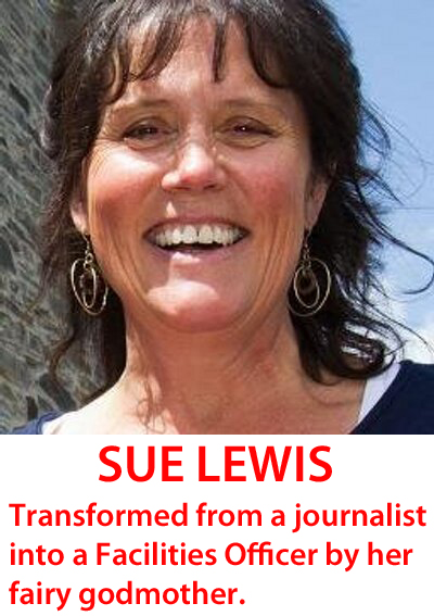 Sue Lewis fairy godmother