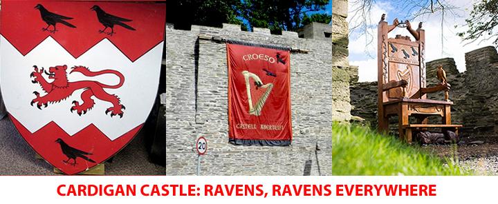 Ravens display