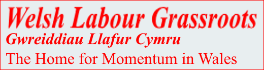 Welsh Labour Grassroots