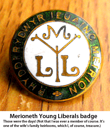Young Liberal badge
